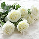 """18"""" tall Real Touch artificial spring sweet rose flowers with thorns for arrangements, bouquets, centerpieces (6 pcs) (Milky White)"""