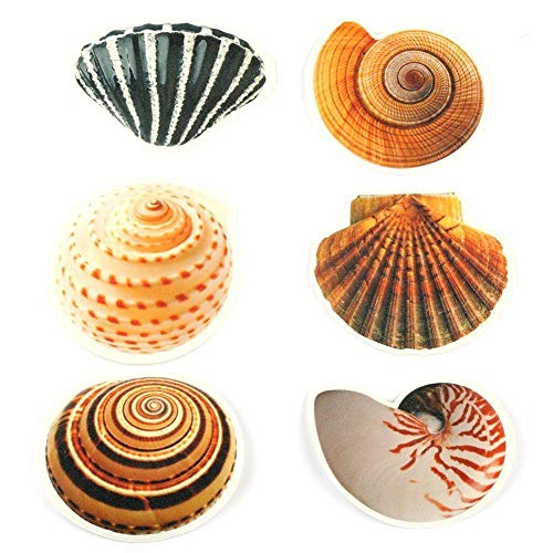 6 pcs Shell Bathtub Stickers Safety Fish Decals Tread Non Slip Anti-Skid Applique New by Unknown