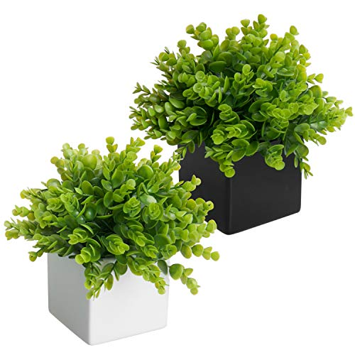 - MyGift Artificial Plants in Black & White Square Ceramic Pots, Set of 2