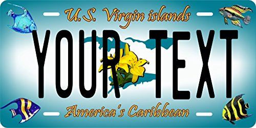 (PhotoZoneGa US Virgin Islands 2006 Personalized Custom Novelty Tag Vehicle Car Auto Motorcycle Moped Bike Bicycle License Plate)