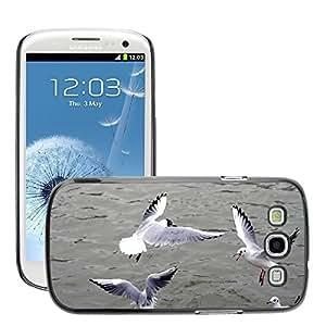 Etui Housse Coque de Protection Cover Rigide pour // M00109334 Gaviota de plata Negro con cabeza de // Samsung Galaxy S3 S III SIII i9300
