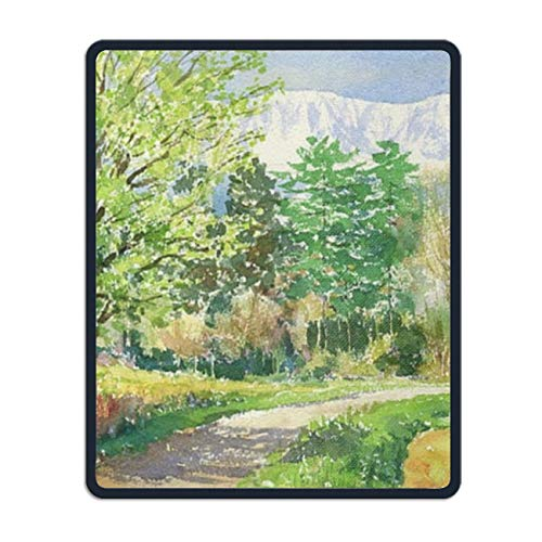 Mouse Pad, Country Road Landscape Gaming Mouse Pads Mousepad - 8.66 x 7.08 inch (State Florida Seminoles Landscape)
