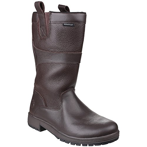 Cotswold Womens/Ladies Ascot Waterproof Pull on Wellington Boots Brown