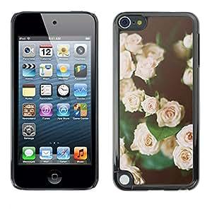 FlareStar Colour Printing Roses Vignette Black Green Pink Spring cáscara Funda Case Caso de plástico para Apple iPod Touch 5
