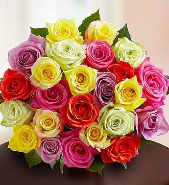 Two Dozen Assorted Roses Bouquet Only by 1-800 Flowers (One Dozen Rainbow Roses)