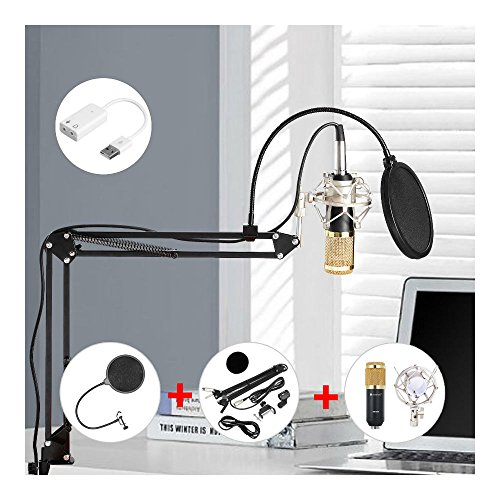 Condenser Microphone Kit Set Audio Pop Filter Boom Scissor Arm Stand Shock Mount from Unknown