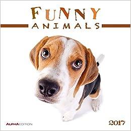 Funny Animals 2017 - Broschürenkalender por None epub