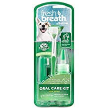 COSMOS Tropiclean Fresh Breath Plaque Remover Pet Oral Care Kit, Large