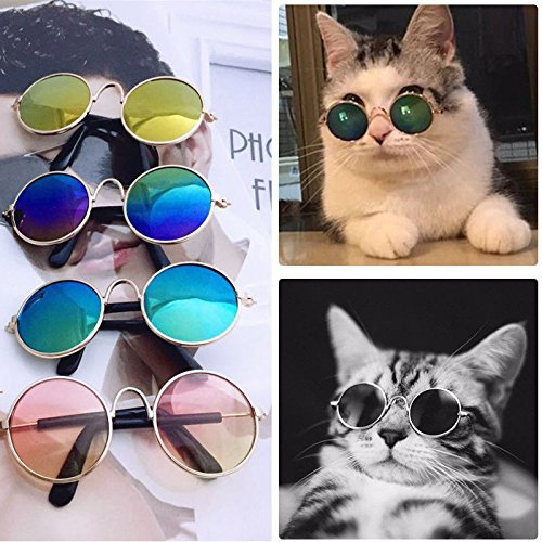 VIPASNAM-Pet Cat Dog Fashion Sunglasses UV Sun Glasses Eye Protection Wear Random - Rimmed Red Eyes Cats
