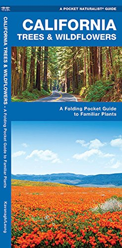 California Trees & Wildflowers: A Folding Pocket Guide to Familiar Plants (A Pocket Naturalist Guide)