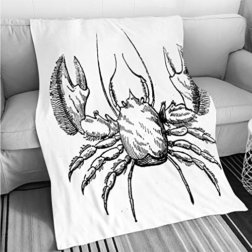 BEICICI Breathable Flannel Warm Weighted Blanket Antique Illustration of (Broad Clawed) Porcelain Crab Porcellana platycheles Fun Design All-Season Blanket Bed or Couch