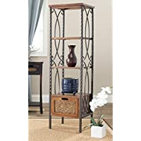 Safavieh American Homes Collection Selsey Antiqued Pewter and Dark Walnut Etagere