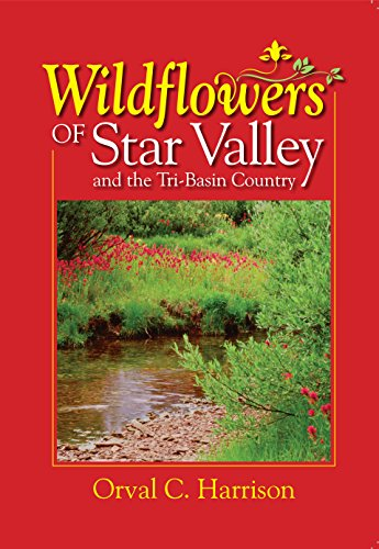 Tri Orchid (Wildflowers of Star Valley and the Tri-Basin Country)