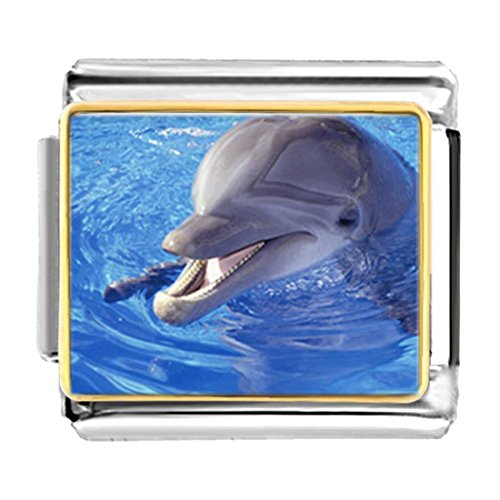 - GiftJewelryShop Gold Plated Smiling Dolphin Bracelet Link Photo Italian Charms