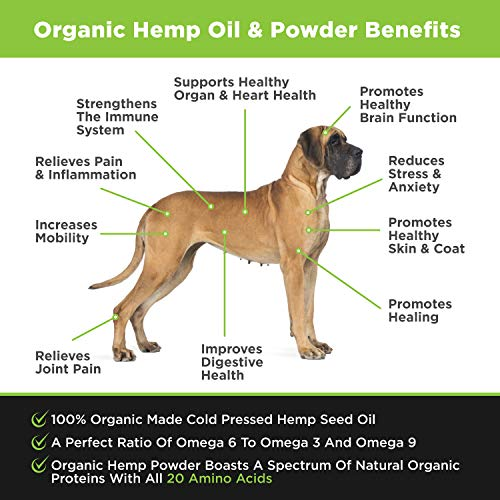 51qF4G P6rL - POINTPET Advanced Hip and Joint Supplement for Dogs with Organic Hemp Seeds and Oil, Best Glucosamine Chondroitin, MSM, Omega 3-6, Improves Mobility, Reduces Pain and Inflammation, 90 Soft Chews