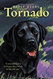 Tornado (Trophy Chapter Book)