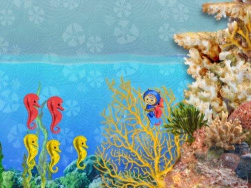 (The Aquarium Fix-It )