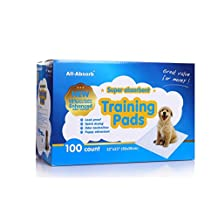 All-Absorb 100 Count Training Pads, 22-Inch by 23-Inch