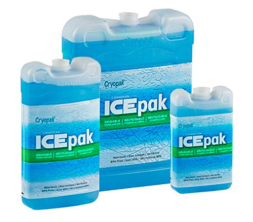 Cryopak Reusable ICE-Pak – For Coolers, Lunch Box and Insulated Bags – Perfect for School Lunch, Picnics, Trips at the Beach, BBQs, Camping, and Other Outdoor Activities (Mixed, 3-Pack)