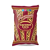 Popcornopolis Gourmet Popcorn Snack Bag (pack of 20) (Caramel Corn 2.65oz)