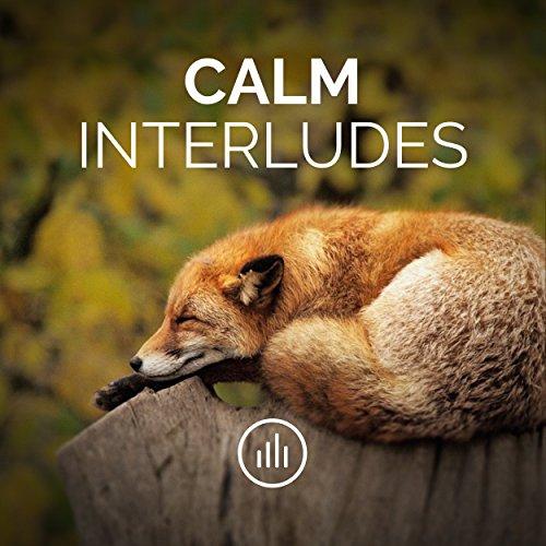 Calm Interludes