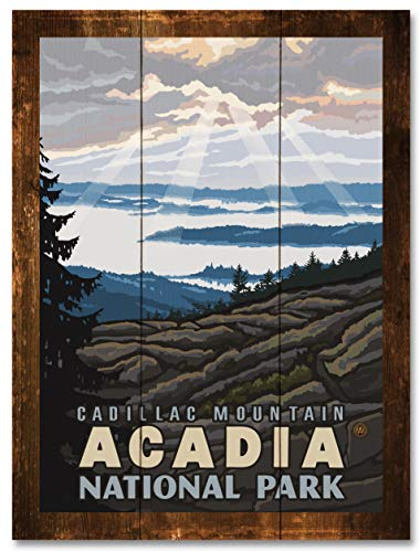 Cadillac Mountain Acadia National Park Rustic Wood Art Print by Paul A. Lanquist (18