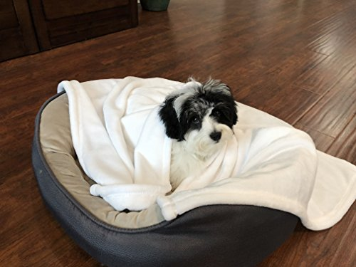 Higher Comfort Super Soft Pet Blanket for Small Dogs, Puppies, Cats & Kittens - Wagging Tail White - 30
