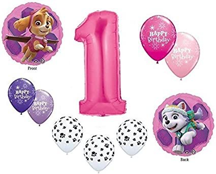 Amazon GIRLS PAW PATROL Dog 1st 1 First Pink 10 Piece