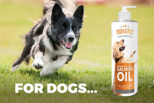 Mighty petz mighty omega 3 6 wild alaskan salmon fish oil for Fish oil for dogs dry skin