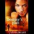 Destiny's Plan (Destiny's Series Book 1)