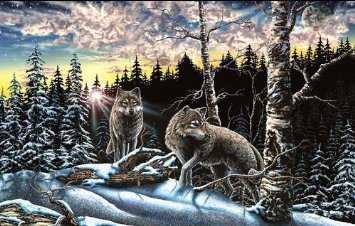 15 Wolves 1000pc Jigsaw Puzzle by Stephen Michael Gardner by SunsOut 1000pc Sunsout Jigsaw Puzzle