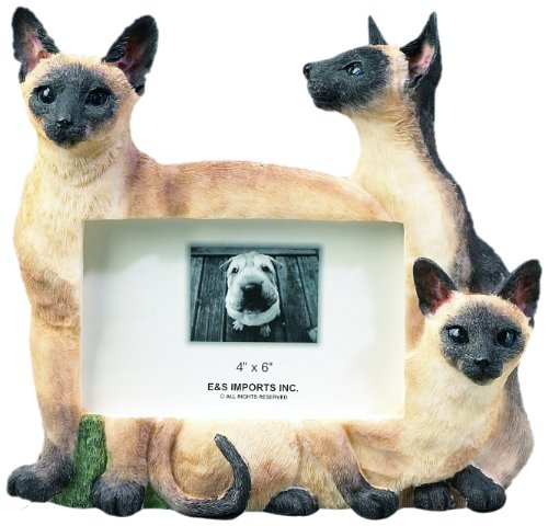E&S Pets 35297-6 Large Cat Frames by E&S Pets (Image #2)