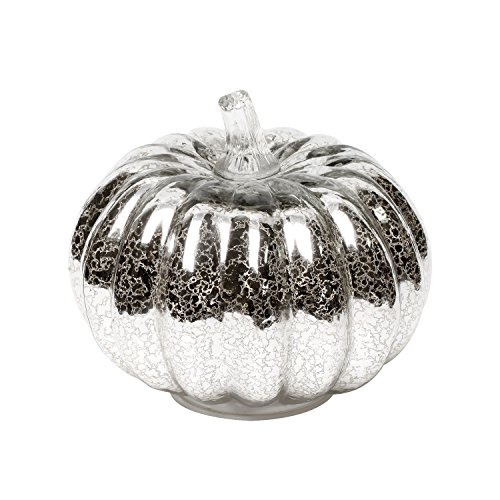Mercury Glass Lighted Pumpkin with Timer for Fall Decor, Halloween Lantern,Silver,5.5 inches