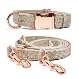 KUYOUGOU Heavy Duty Dog Collar and Leash (6.6'), Stylish Design with Rose Gold Set, 3 Adjustable Lengths, for Small to Large Dogs (S (11''-15.7''), Beige)