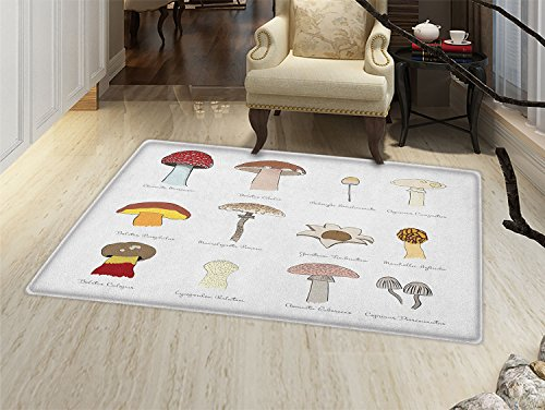 Multi Blusher - smallbeefly Mushroom Bath Mats Carpet Colorful Fungi Pattern Blusher Boletus Sketch Style Plants Autumn Illustration Floor Mat Pattern Multicolor