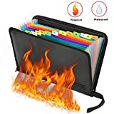 Expanding File Folder Fireproof Document Bag Portable Rainbow Fireproof Accordion Organiser Fireproof File Bag A4 with Fire Resistant Zipper for Bills and Valuables Storage Protection (13 Pockets)