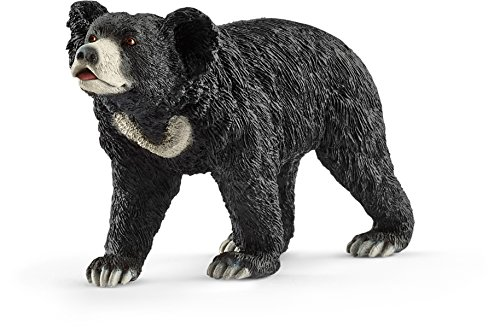 north america bear - 4
