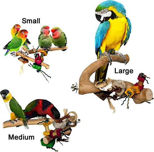 Bird Two-Branch Fun Toy Perch (Large - ~15-18