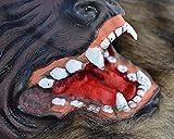 Simply Silver - Wolfman Mask - Faux Werewolf Mask Wolfman Masks Latex Costume Prop Halloween Novelty Wolf