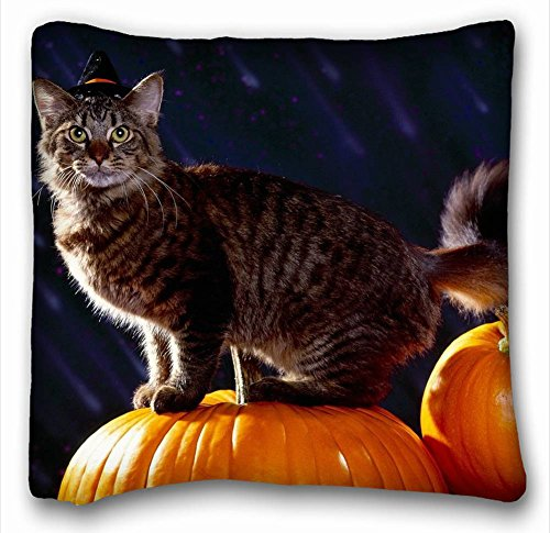 Decorative Square Throw Pillow Case Animals holiday cat Pumpkin 18