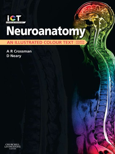 Neuroanatomy E-Book: An Illustrated Colour Text (Function Of Dendrites)