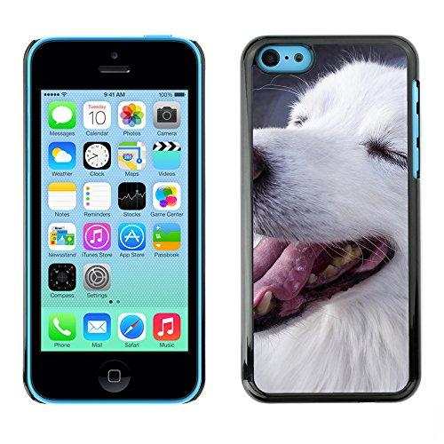 Premio Sottile Slim Cassa Custodia Case Cover Shell // F00009561 chien // Apple iPhone 5C