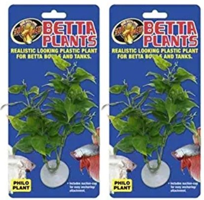 Zoo Med Laboratories AZMBP20 Betta Plant Philo (2 Pack) -
