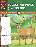 Learn to Draw Forest Animals and Wildlife, Sandy Phan, 1939581249