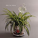 Automatic Flower Slow Drip Watering Hand Blown