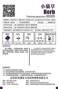 Semillas de hierbas de gato precioso, semillas gatito hierba, flor de la planta de semillas de Bonsai 220 partículas / bolsa