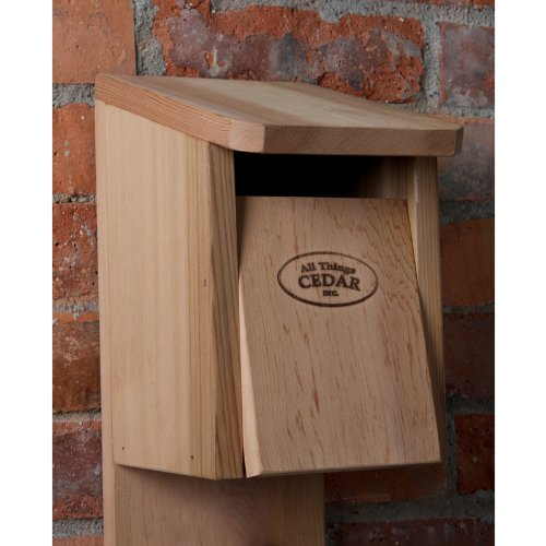 All Things Cedar BH12 Blue Jay Bird House BH12U