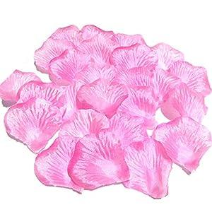 MayaRed 2000 PCS 22 Colors Artificial Silk Rose Petals Wedding Flower Decoration 5