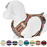 Blueberry Pet 9 Colors Soft & Comfy 3M Reflective Multi-colored Stripe Padded Dog Harness Vest, Chest Girth 22''-26.5'', Neck 17.5''-26'', Dark Green & Pink, Medium, Mesh Harnesses for Dogs