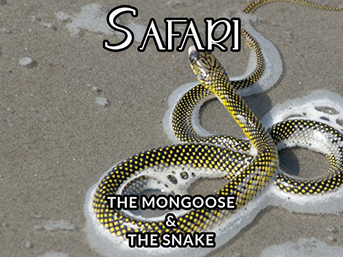 The Mongoose and the Snake - Com Tree Planter